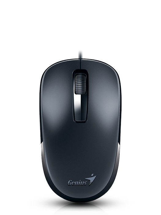 Mouse Genius DX-125 USB